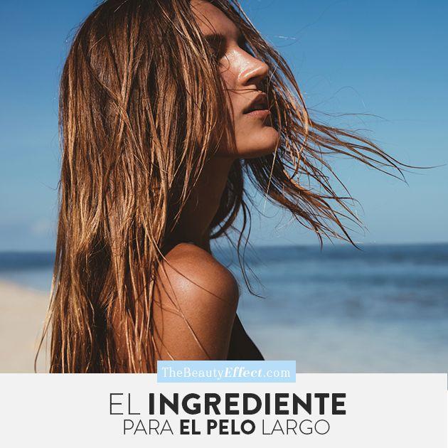 Les compartimos el ingrediente secreto que les ayudará a conseguir el pelo largo que siempre han buscado. >>> http://bit.ly/2qpvyVg