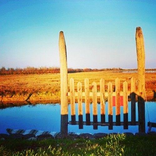 """In barena. Oltre la porta. """"Ma sedendo e mirando, interminati spazi di là da quella, e sovrumani silenzi, e profondissima quiete"""" - http://instagram.com/p/l57ywUOPr1/ - #Semprecaromifu - #scritturebrevi - @Futura Festival Civitanova Marche"""
