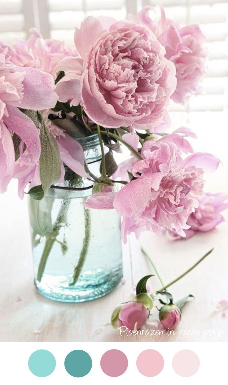 Pioenrozen in aqua blauwe vaas. Zachte tinten roze en blauw / groen / petrol