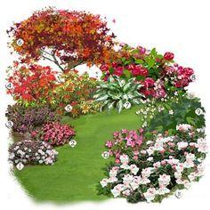 1 Azalée japonaise 2 Pieris 3 Erable du Japon 4 Anémone du Japon 5 Hosta à feuilles panachée 6 Hortensia 7 Rhododendron nain 8 Bégonia tubéreux 9 Azalée 10 Bruyère d'hiver
