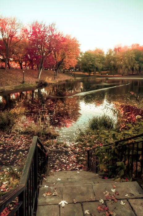 Autumn-reflections-in-Parc-La-Fontaine. Montreal, Canada