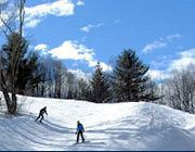 Wolfe Ridge Ski Lodge~Madison County
