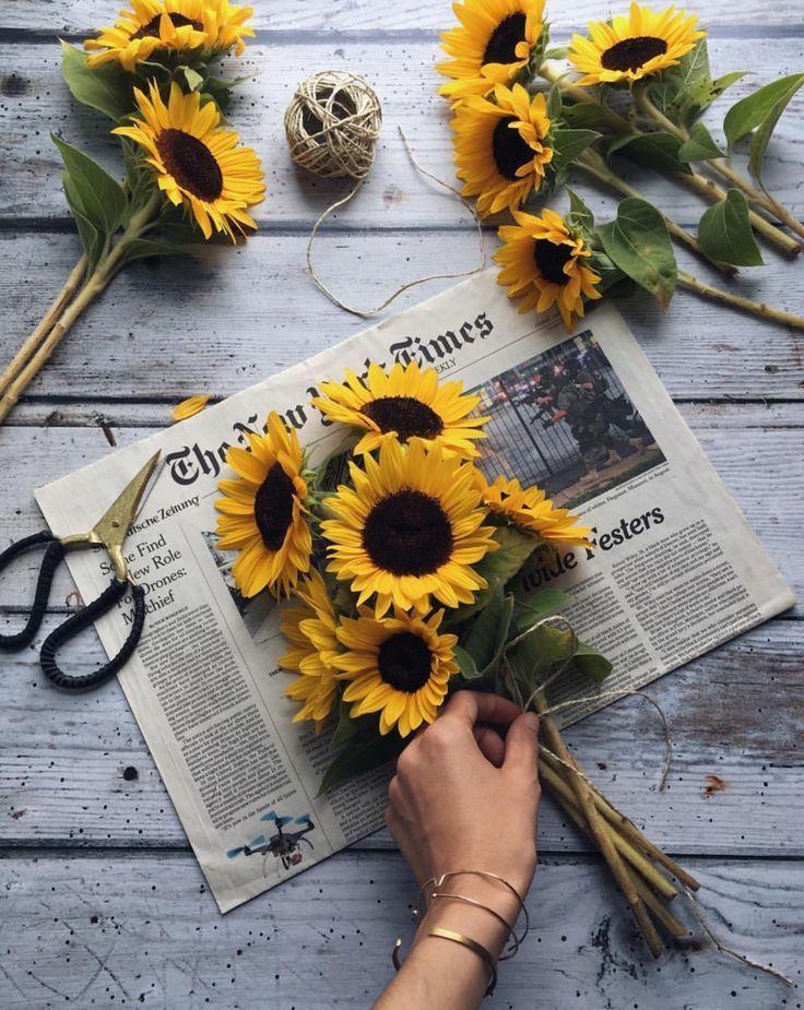 Studiostories Sagt Sonnenblumen Machen Sich Gut Auf Fotos Sunflower Sunflower Wallpaper Love Flowers