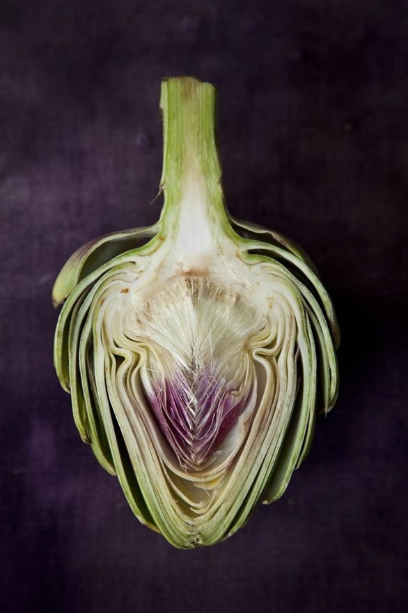 byChia ChongInspiration, Art Photography, Colors, Artichokes Heart, By Chia Chong, Food Photography, Wedding Colours, Food Art, Shades Of Green And Purple
