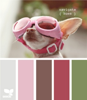 pink!Colors Pallets, Bathroom Colors, Design Seeds, Girls Room, Colors Palettes, Colors Schemes, Designseeds, Navigation Hues, Baby Puppies