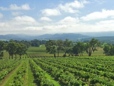 Yarra Valley, Yarra Valley Wineries, Best day trips in Melbourne,