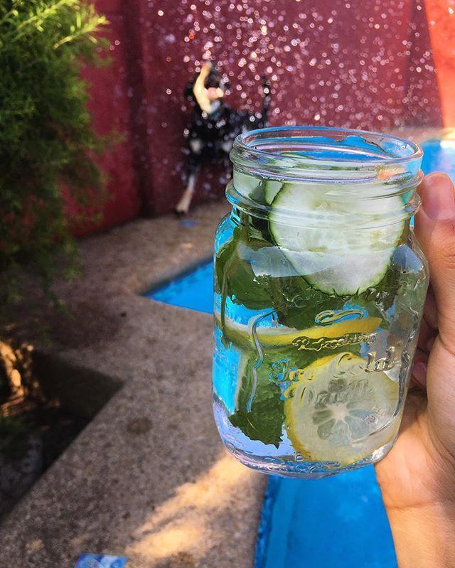 Pasando el calor en la piscina con la Menta🐶 y mi MasonJar de @di_fiorii con agua filtrada-pepino-limón-menta 💧 Ahora que empiezan las temperaturas altas es ideal mezclar nuevos sabores agregando ingredientes como estos 🍋🍓🌱y así no caer en tomar bebidas o jugos azucarados 👌🏽 ~ Linda tarde para todos 🌻 . . . . . . #piscina #pool #water #summer #verano #calor #drinks #agua #doglover #dog #refrescante #limon #lemon #pepino #cucumber #mint #menta #garden #jardin #afternoon #goodafternoon…