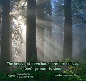 True Cute Best Love Quote : Self Love Quotes Rumi Love Quotes Love quotes Conversation about Friendship Between Friends Rumi Quotes On Silence Rumi  have the best of everything, they just make the best of everything other all along. ~ Rumi > #Rumi #Love #Quotes free, rumi love quotes  best-quotes-english-english-quotes-famous-quotes-friendsip-quotes  Rumi quotes -  b67796340f46c5c07341a4bd91514199.jpg rumi quotes  seek for love, but merely to seek and find all.. Rumi best love quotes More…