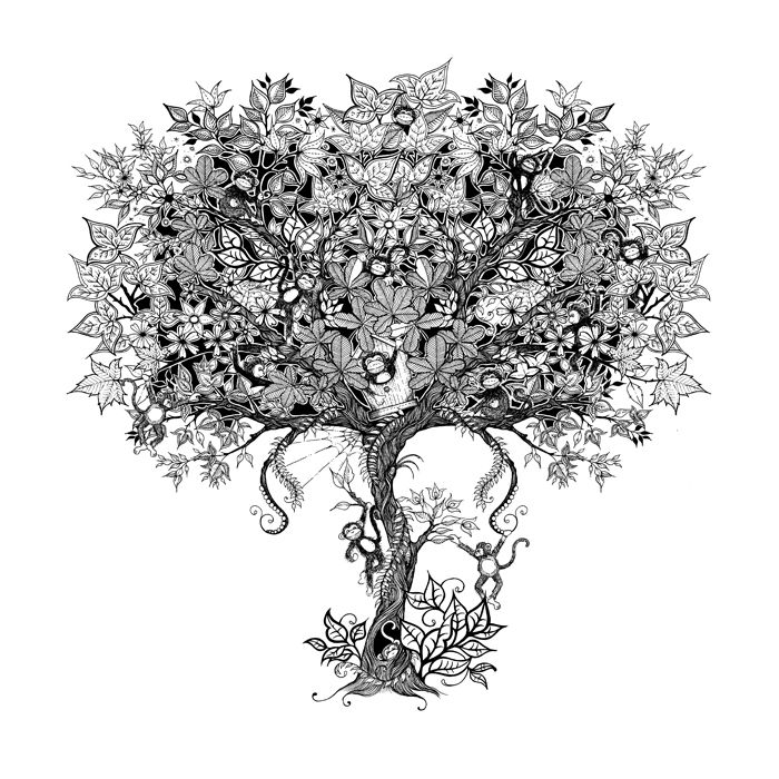Intricate Patterns By Johanna Basford