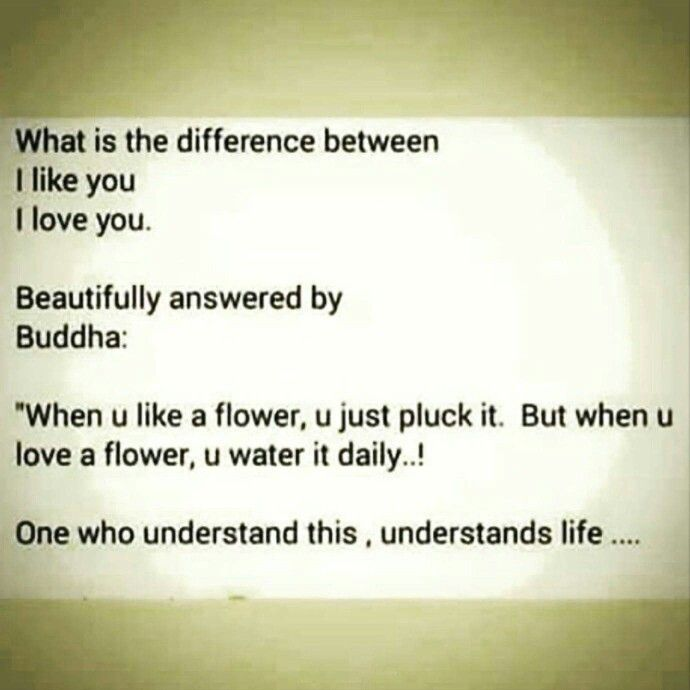 amo buddhist single men Buddhist single men in tolar online dating with pretty people.