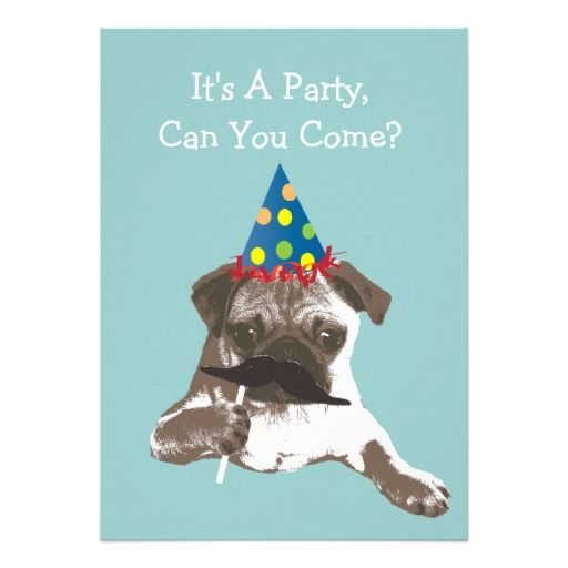 427 best Funny Birthday Party Invitations images – Party Invitation Funny