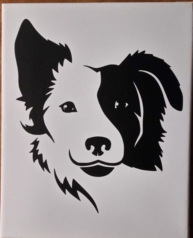 Split Face Border Collie T Shirt By Allpetsdesignshop On