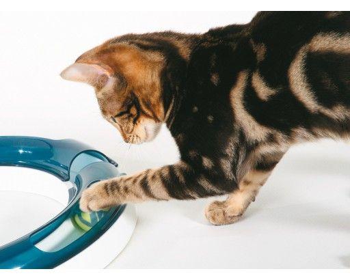 Cat-It Senses Ersättningsboll till Lekcenter