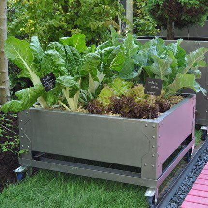 89 best Jardin Potager images on Pinterest Vegetable garden - Ou Trouver De La Terre De Jardin
