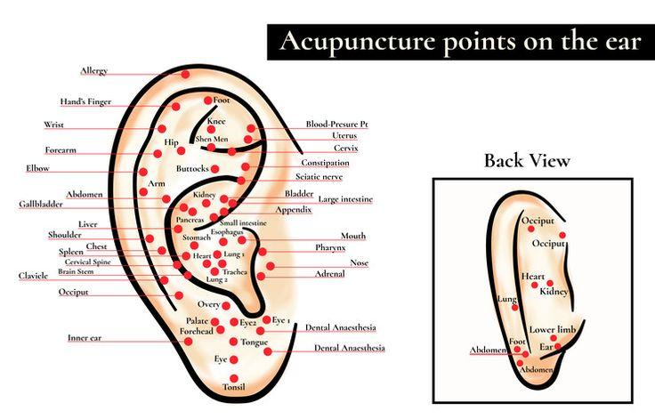 Masaż ucha może mieć zbawienny wpływ na zdrowie