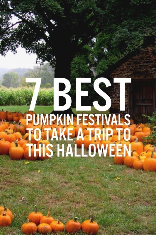 Everyone remembers their childhood trips to the local pumpkin patch. You probably chose a pumpkin you couldn't even budge. But what if you could give your kids an even more amazing experience? Say a patch with 75,000 pumpkins and houses made of pumpkins? eBay has the ultimate list of the best pumpkin festivals across all 50 states.