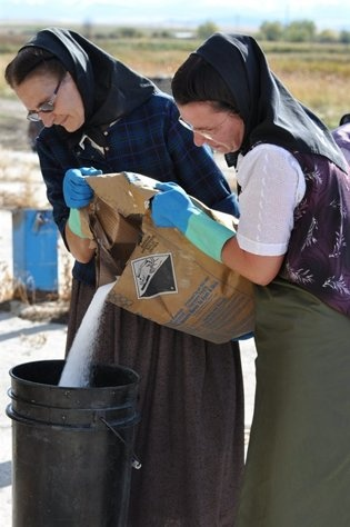 The Hutterites Hofers working
