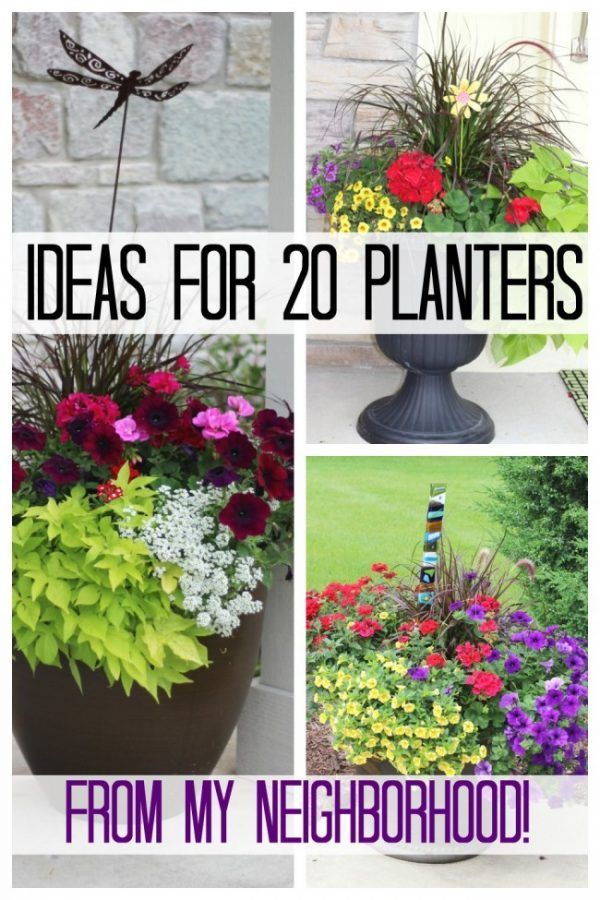 Ideas from 20 planters from my neighborhood! – Share Today's Craft and DIY Ideas