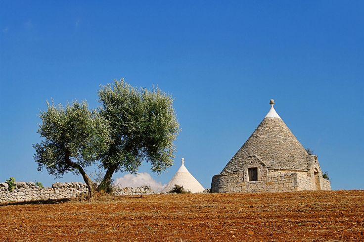 Puglia #trulli: landscape