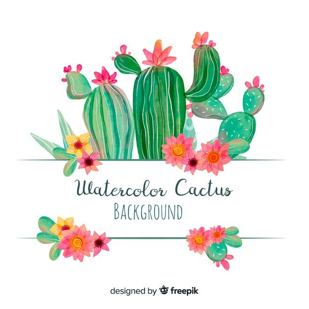 Download Watercolor Cactus Background For Free Watercolor Cactus