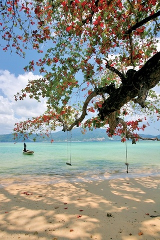 Patong Beach, Phuket Island, Thailand. If I was there, I'd be swinging all day! :D Oh and maybe swim ;P