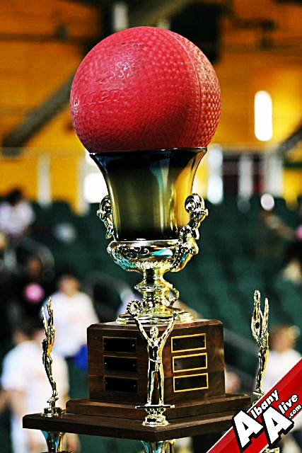 Kearney Cup Dodgeball Tournament Trophy Albany Ny