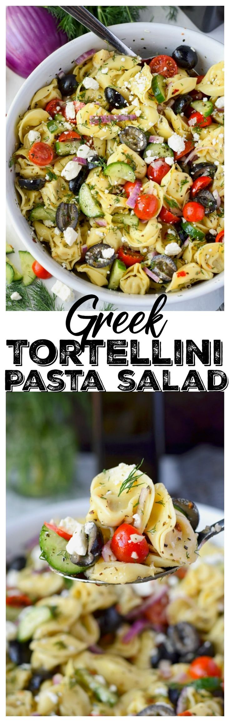 This Greek tortellini pasta salad recipe has plenty of veggies, and the homemade dressing has tons of flavor. This salad even gets better as it sits and the pasta soaks up some of that dressing. It's quick and easy and can be made ahead, and an overall crowd pleaser! #tortellinisalad #pastasalad #sidedish #potluck  via @butteryobiscuit
