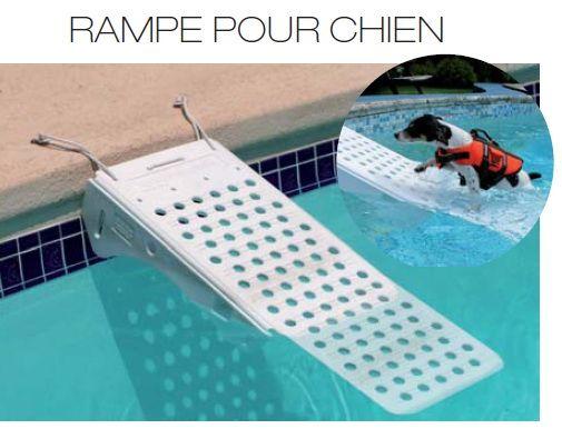 15 pingles piscine pour chien incontournables piscines for Piscine pour grand chien