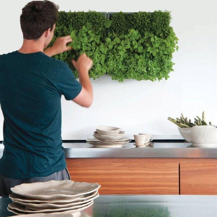 Nie masz miejsca na zioła w kuchni?? Żaden problem. Prostym i ładnym rozwiązaniem jest KAROO  www.zielonekaskady.pl