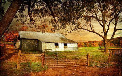 Scarica sfondi alberi, vecchia fattoria, recinzione