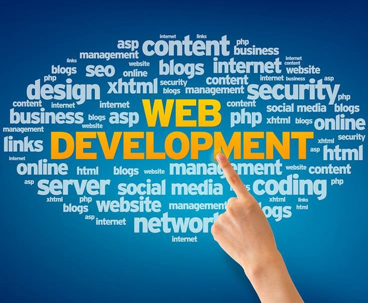 website development brampton