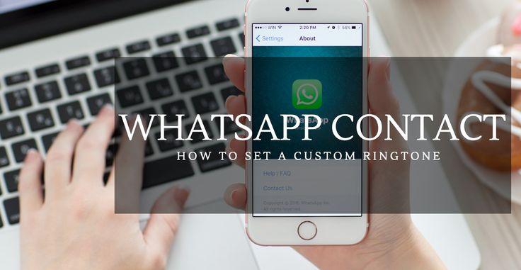 How to Set a Custom Ringtone For a WhatsApp Contact