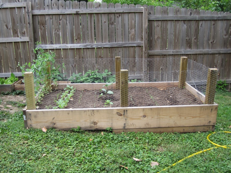 Larger planter box  http://stlgarden.blogspot.com/