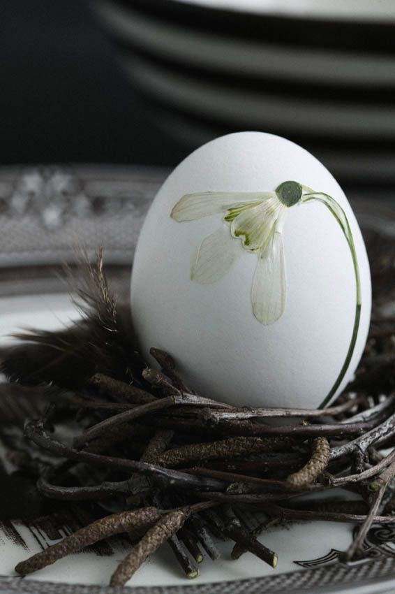 A dried snow drop glued to a natural egg. Simple and so beautiful! But if you eat the egg, the snow drop is destroyed, too. What a pity!