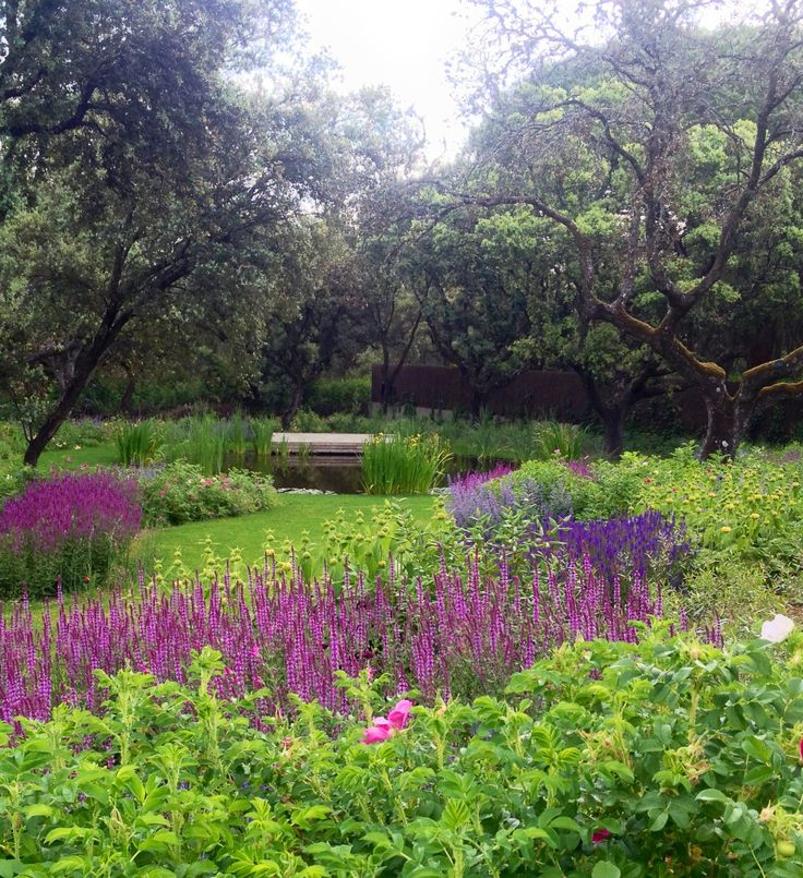 101 Best Images About Planting Design ~ Drifts & Massing On