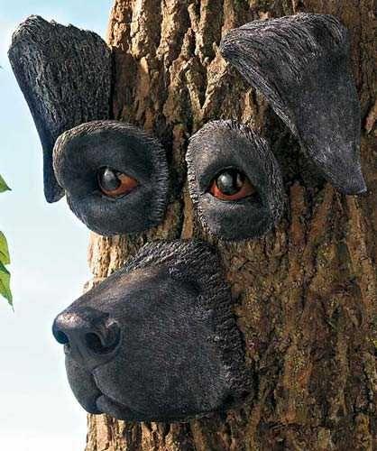 Black Lab Tree Face Black Labs Pinterest Trees