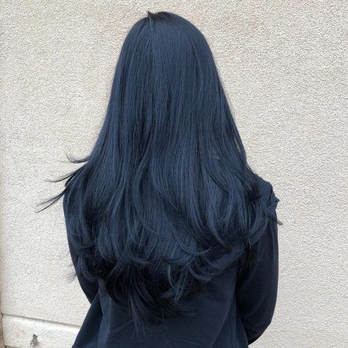 14 Fantastic Jet Black Hair Color Ideas for Every Skin ...