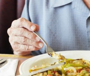 Recipes for easy to swallow meals on wheels