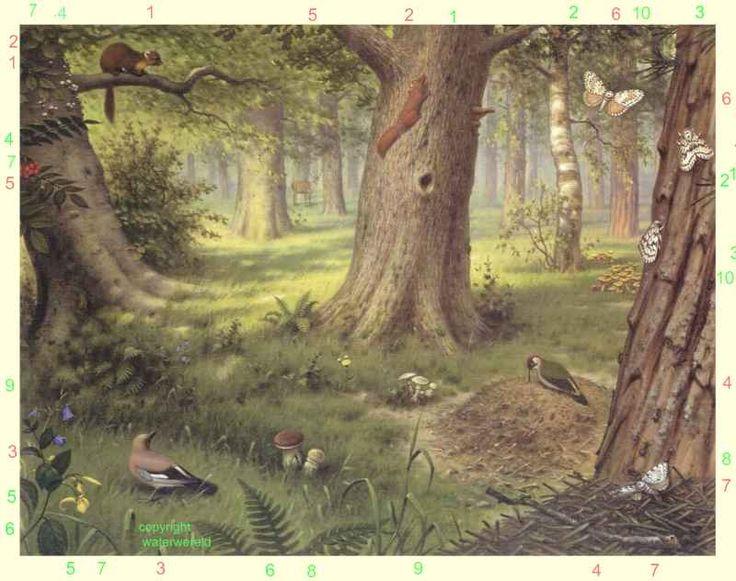 """Schoolplaat van M.A. Koekkoek. """"In het bos""""."""