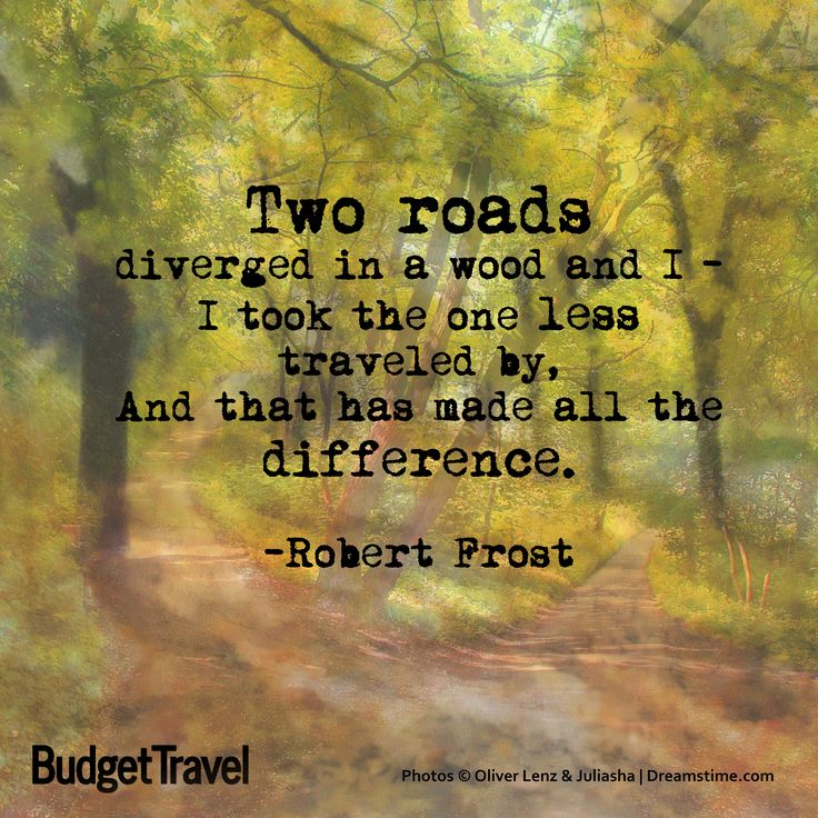 """Two roads diverged in a wood and I-I took the one less ..."