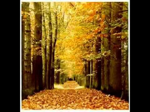 Beertje Bruin en de herfst