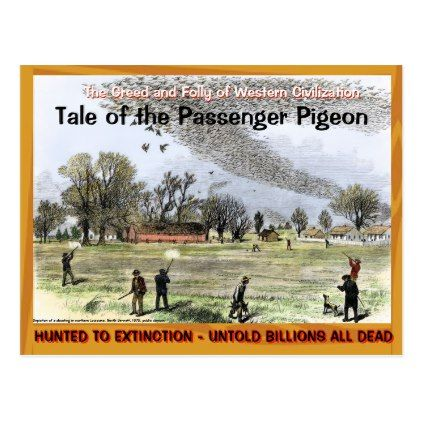 Sad Sad Tale of the Passenger Pigeon -- Postcard - diy cyo customize gift idea