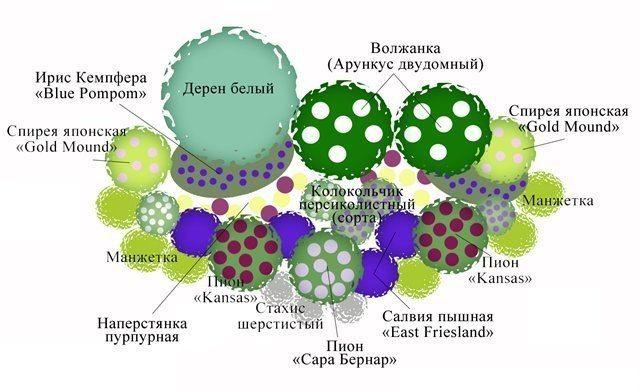 СХЕМЫ ЦВЕТНИКОВ, КЛУМБ И МИКСБОРДЕРОВ. – 167 фотографий | ВКонтакте