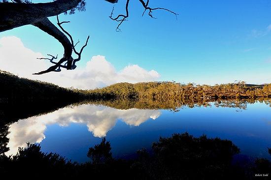 Lake Dobson, late afternoon, Mt Field national park, Just north of Hobart, Tasmania, Australia