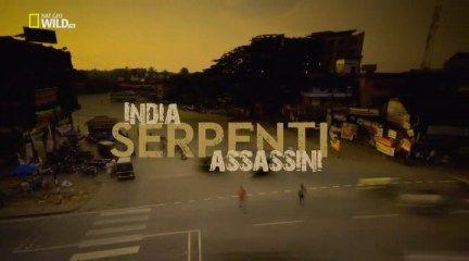 Nat Geo Wild - India,serpenti assassini (2011) .avi HdtvRip XviD MP3-ITA