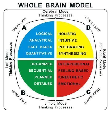 Midbrain Activation - Enhance Your Brain Power