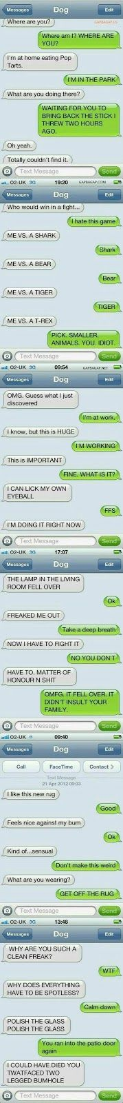 Top 6 Hilarious Text Messages ft. Funny Dogs