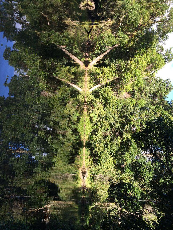 Deep Reflection