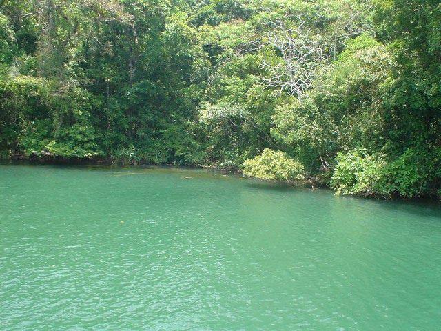 Photos of Colón, Panama: Chagres National Park