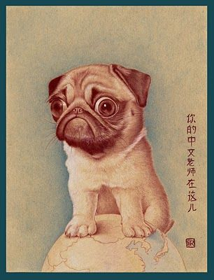 China - Origin of the pug.